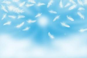 青空と天使の羽
