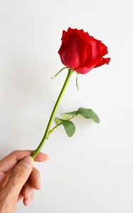 男性から薔薇